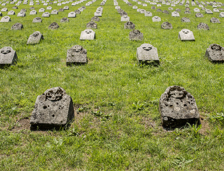 a memorial to fallen soldiers: Gravestones placed in lines, each one for one soldier, fallen in battle.