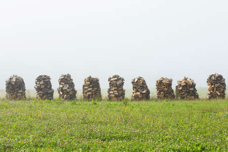 lumber industry: Wood drying on air for winter season in mist.