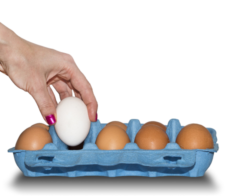 by placing: Placing white egg into a blue cardboard container. Stock Photo