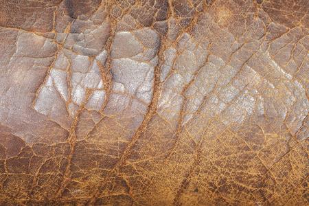 아주 오래된 금이 간 가죽 의자 texture.jpg