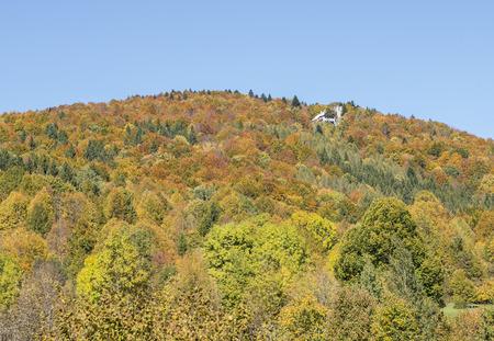Beautiful autumn colors on a small mountain.
