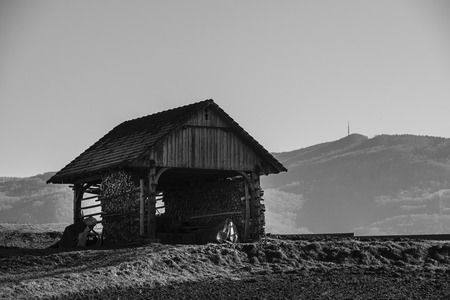 Traditional Slovenian structure, used for storing farming tools, drying corn, and so on Stok Fotoğraf