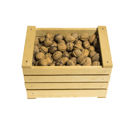 Wooden basket full of walnuts isolated on white.