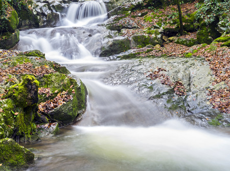 Small forest waterfall with clean running water. Stok Fotoğraf