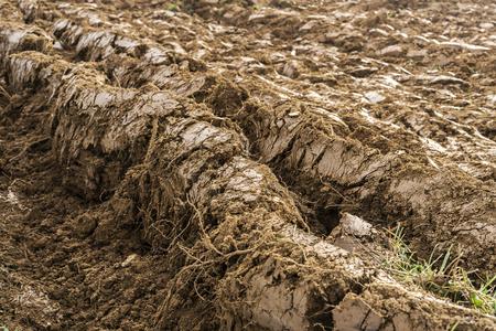 Plowed field in the autumn time. Stok Fotoğraf