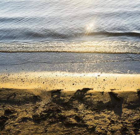 Small sandy beach with seaweed.