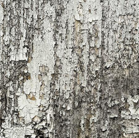 Peeling paint on wood close up texture.