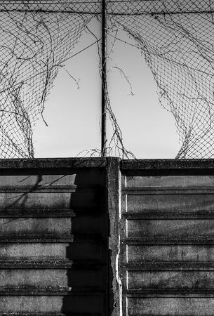 Broken fence leading to somewhere else.