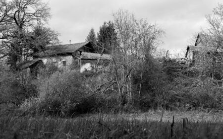 Novo mesto, Slovenia, EU - November 11, 2018: Old and abandoned buildings are covered behind vegetation.