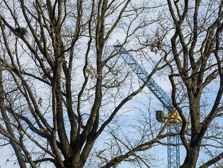 Heavy construction crane with trees infront and a small bird nest. Stok Fotoğraf