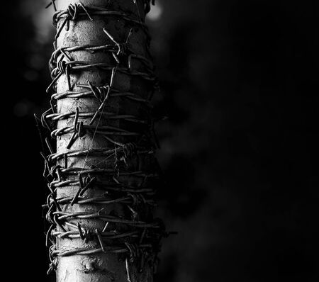 Barbed wire wrapped around a metal pole symbolizing harsh conditions.