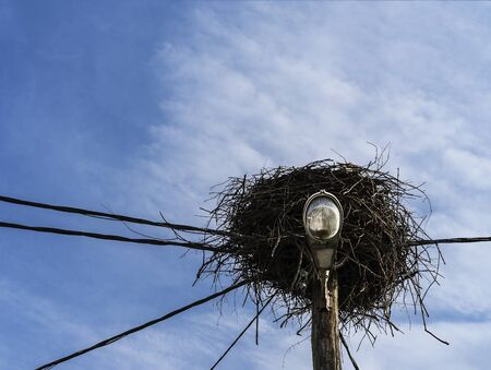Abandoned storks nest on a wooden light pole with electric  cables.