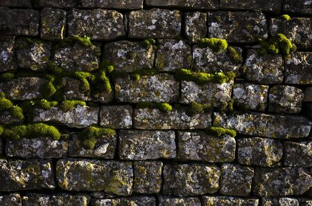 Wall with some growing moss spots 免版税图像 - 145016672
