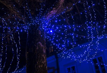 Christmas decoration light placed around the tree in urban area. 免版税图像
