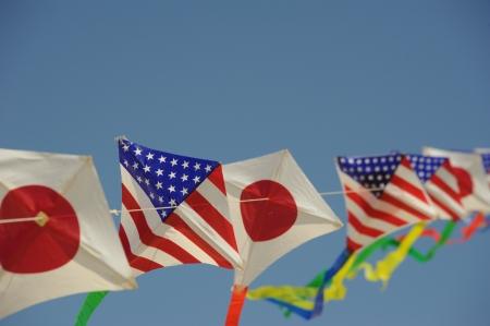 Flag Kits