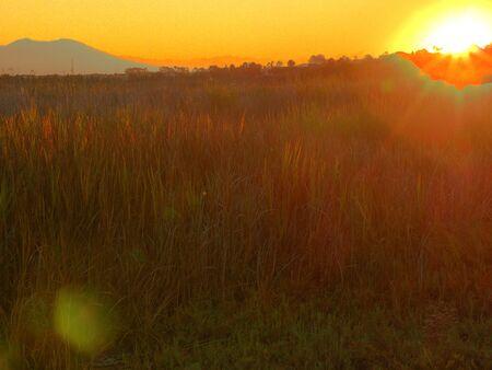 日の出のフィールド 写真素材