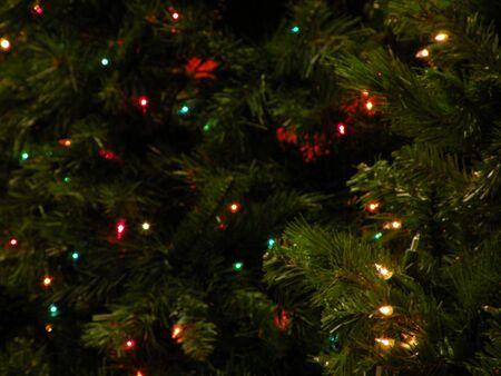 クリスマス ツリーの点灯