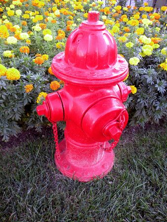 A red fire hydrant in front of a flower bed