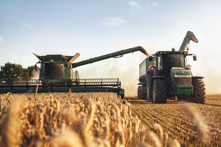 Combine harvester and a tractor working on a wheat field