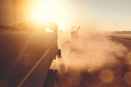A Combine harvester and a tractor harvesting wheat during sunset 免版税图像