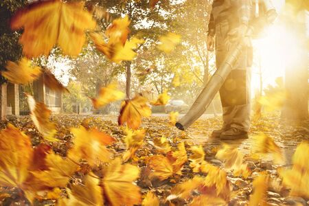 Man with a leaf blower is removing fallen leaves from the sidewalk Zdjęcie Seryjne