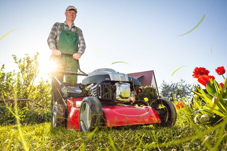 Man with a lawn mower working in his sunny garden