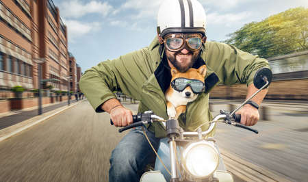Man and his dog riding a motorcycle in the city Standard-Bild