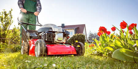 Lawn mower in a sunny garden at spring time