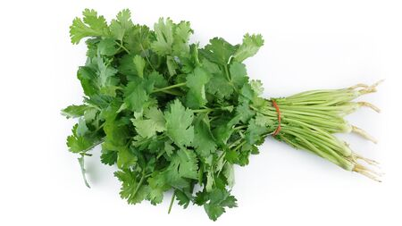 Fresh coriander vegetable isolated on white background Banque d'images