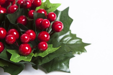 Detail of Christmas garland with winter berries, red ribbon and green leaves over white background  Stock Photo