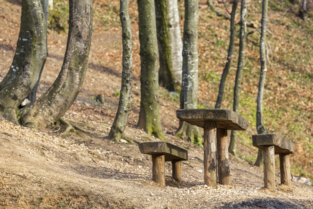 Rustic wooden picnic table and seats in forest at Solomons Stones camping site, near Brasov city, Romania. photo