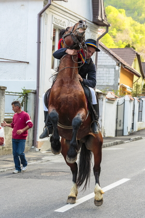 BRASOV, ROMANIA - APRIL 27: Brown horse rears with unidentified rider of Young Juni group during the old traditional parade of the Brasov Juni on April 27, 2014 in Brasov, Romania.