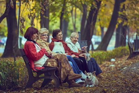 vejez feliz: BUCAREST, RUMANIA - 23 de octubre de 2013: Cuatro mujeres jubiladas felices no identificados descansar en un banco y disfrutar de sus cigarrillos, escena de oto�o. Los jubilados representan el 22% de la Bucarest