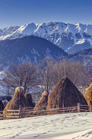 sheepfold: Winter rural landscape with traditional Romanian farm with sheep pen and haystacks near Piatra Craiului massif in Magura village, Brasov county, Romania.