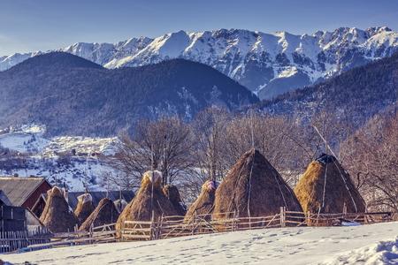 冬羊ペンとマグラ村、ブラショフ県、ルーマニア ピアトラ Craiului 山地に近い干し草の山で伝統的なルーマニア語ファームと田園風景。