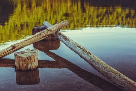 stillness: Stillness. Serene landscape with bare tree trunks fallen in the translucent water of a lake. Toned colors.