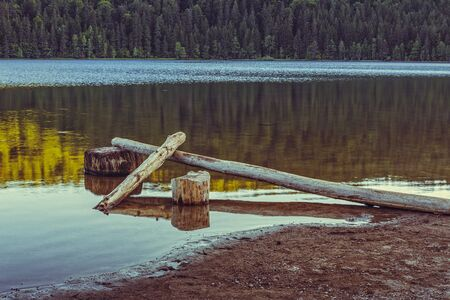 lifeless: Tranquil evening scenery with peeled, lifeless trees fallen, sunken in the pellucid water of a lake. Toned colors. Stock Photo