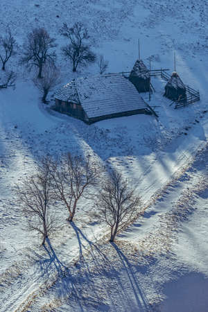 sheepfold: Idyllic sunny winter landscape with rural lane, remote rustic barn, sheepfold and three leafless trees casting strong shadows in the morning.
