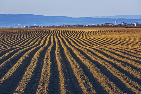furrows: Furrows row pattern in a plowed land prepared for planting potatoes crops in spring in Transylvania region, Romania.
