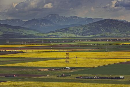 vast: Picturesque landscape with vast yellow rapeseed fields near Ciucas mountains in Transylvania region, Romania.