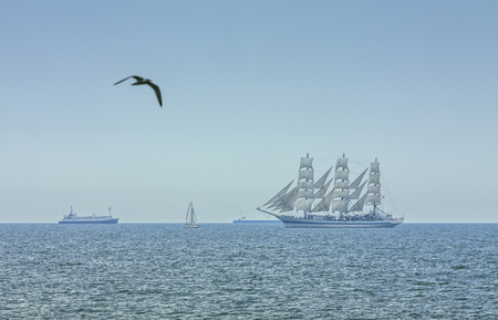 Seascape with flying seagull and three masted tall ship in full sails on the Black Sea on the horizon.