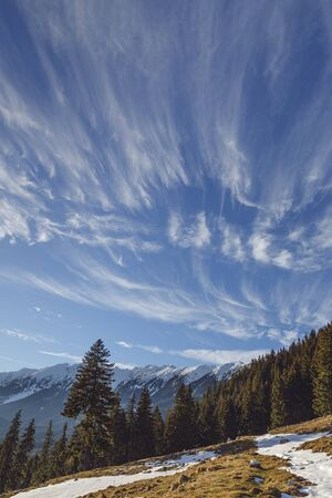 Sunny alpine winter scenery with fluffy cirrus clouds formation seen from Zanoaga meadow in Piatra Craiului mountains, Romania.