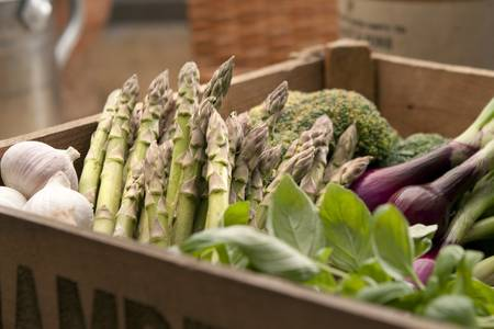 Freshly harvested asparagus in crate with other vegetables and herbs