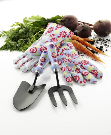 Garden hand tools and gloves isolated on white background