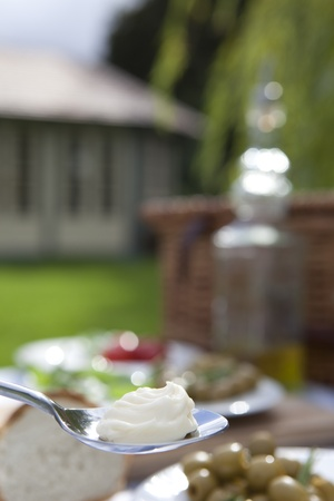Mayonaise on a spoon in a country garden