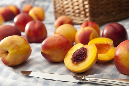 Nectarines scattered on a picnic rug