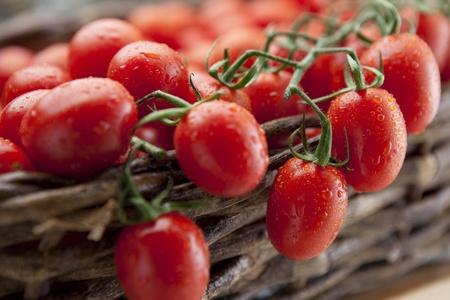 ciruela: Tomates maduros de vid en cascada de una cesta de mimbre