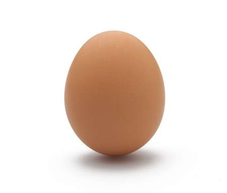 Single egg on a white isolated background with drop shadow
