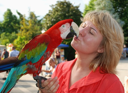 woman holds in the palm of a parrot and kisses Stock Photo
