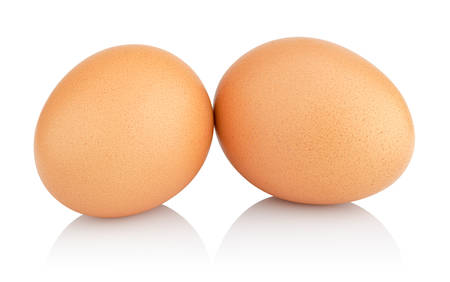 two chicken eggs isolated on white background  photo